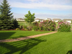 Yardscape Photo Gallery