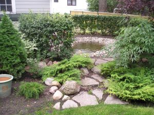 Hill Avenue Pond Feature