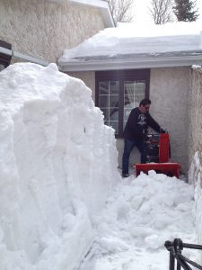 Snowblower Services